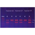 Neo-Gene_MTNR1B (rs10830963) C/G